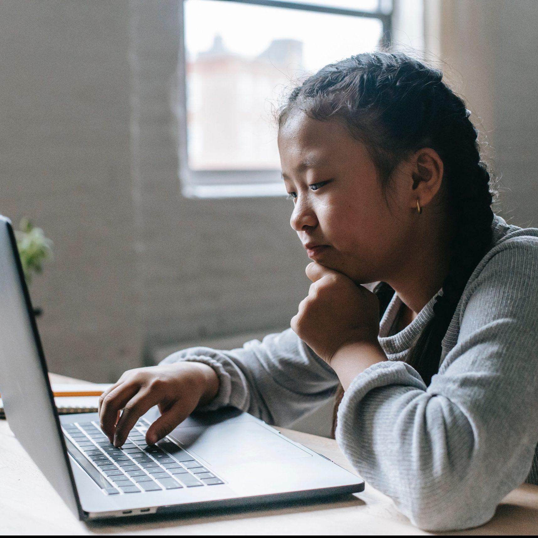 Elementary School Student Using Computer